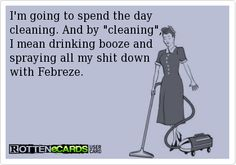 Im going to spend the day  cleaning. And by cleaning,  I mean drinking booze and  spraying all my shit down  with Febreze.