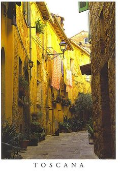 Tuscany love the yellows!