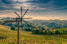 Windmill / wineyards by ChristianThür Photography on Creative Market Windmill, Wind Turbine, Creative, Photography, Windmills, Landscape, Photograph, Fotografie, Photoshoot