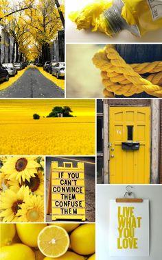 Yellow                                                                                                                                                                                 Mehr