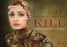 Dia Mirza is the latest Bolly celeb to step up to pose and support PETA India's latest campaign against exotic skins which features her done up as if she's been skinned alive – a reality that snakes go through for belts, shoes and handbags.  To hear Dia talk more ... go to http://osocio.org/message/face_it_exotic_skins_kill/
