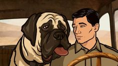 Archer is hysterical