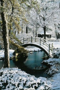 A winter snow decorates the moon bridge in the Fabyan Japanese Garden
