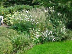 Witte border met grassen