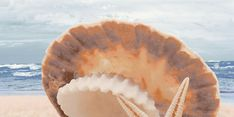 """Аликанте"" - Декор массив 500х250 Apple Pie, Food, Apple Cobbler, Meals, Apple Pie Cake, Apple Pies"