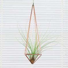 Hanging Geometric Copper Terrarium And Air Plant - pots & planters
