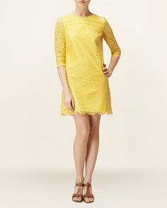 Phase Eight | Sadie Cotton Lace Shift Dress | Women's