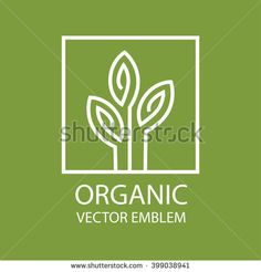 Vector abstract emblem,outline monogram, flower symbol, concept for organic shop or yoga studio, logo design template, linear logo design template, organic food and farming, green, vegan food concept