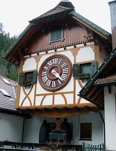 Il cucù del Parco Eble (Germania)