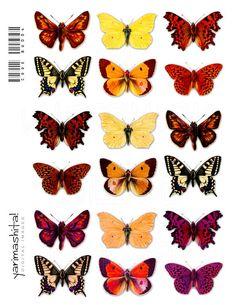 Digital Butterflies images Vintage Collage sheets by Yarimashita, $3.00