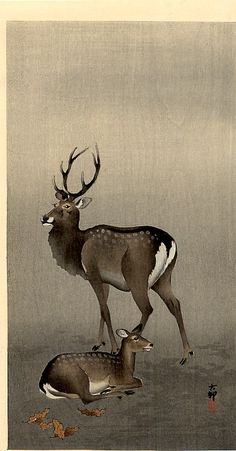 Stag and Recumbent Doe by Ohara Koson