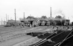Willesden Shed, Steam Locomotive. Steam Railway, British Rail, Electric Train, Train Pictures, Steam Engine, Steam Locomotive, Train Tracks, Africa Travel, Railroad Tracks