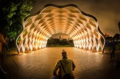Peoples Gas Education Pavilion (Lincoln Park) | 15 Chicago Landmarks That Light Up The Night