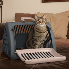Travel Master Pet Carrier *** Be sure to check out this awesome product. (This is an Amazon affiliate link)