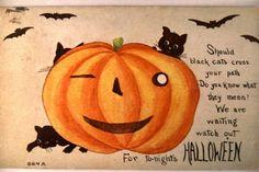 circa 1910 BIG PUMPKIN WITH BLACK CATS Halloween Postcard