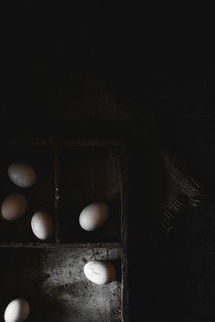 Still: Eggs 1 Dark Pictures, Food Pictures, Dark Pics, Food Pics, Dark Food Photography, Fine Art Photography, No Egg Desserts, Prop Styling, Food Preparation