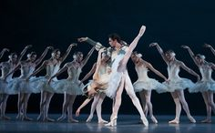 American Ballet Theatre: Swan Lake 28 Aug-04 Sep  The ABT swan into QPAC for an exclusive run of performances The American Ballet Theatre is making the long-haul flight from New York to Brisbane to perform one of the world's most famous classical ballets, Swan Lake. Tchaikovsky's much loved score will be performed by the Queensland Symphony Orchestra.  http://www.au.timeout.com/brisbane/theatre/events/2897/american-ballet-theatre-swan-lake
