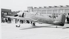 Kawasaki Ki-100-II Hien 'Tony'.