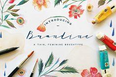 Brandine by KlapauciusCo on @creativemarket