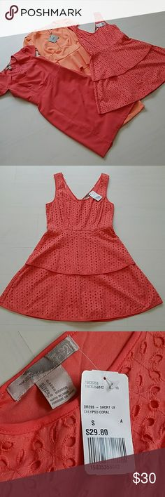 Asos Career Peplum Eyelet Coral Orange Dress Lot Asos (Middle) Career Dress: NEW - Midi Length - Size 4 - Originally $50 Love 21 (Right) Eyelet Dress: NEW - Knee Length - Size Small - Originally $30 Forever 21 Contemporary: New WITHOUT tags - Size XS (Runs larger) - Originally $30  All of these are perfect career dresses! Asos Dresses Midi