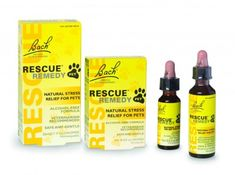 Rescue Remedy PET Dropper – Natural Homeopathic Stress Relief Drops for Pets Dog Separation Anxiety, Dog Anxiety, Anxiety Help, Camping With Cats, Medication For Dogs, Propolis, Natural Stress Relief, Starter Set, Chill Pill