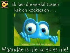 Maandae Qoutes, Funny Quotes, Afrikaanse Quotes, Weekend Quotes, Good Morning Wishes, Haha Funny, Funny Stuff, Cool Words, Funny Pictures