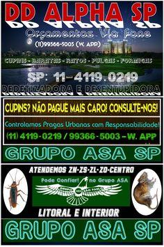 Bill Andersen Dedetização/Treinam Dedetizadora 11 96424 9997(W.app)/4149 4639 Cursos p/ Todo Brasil
