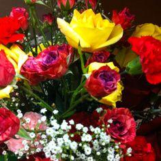 Holli Hansen's pretty flowers