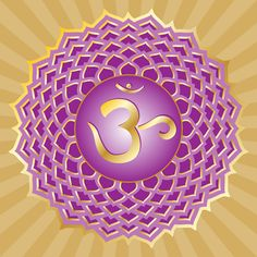 Sahasrara, the 7th chakra.  Energy center for spiritual connection located at the crown.