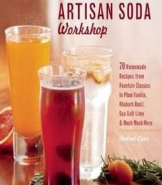 The Artisan Soda Workshop PDF