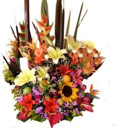 Abundancia floral