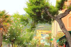 Badestrand Monterosso an der ligurischen Küste von Italien Cinque Terre, Strand, Plants, Italy, Landscape, Vacation, Plant, Planting, Planets