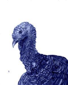 Illustrações com caneta Bic