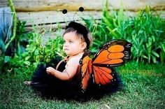 so cute. black tutu and monarch butterfly wings. Butterfly Baby, Butterfly Kisses, Monarch Butterfly, Butterfly Wings, Baby Halloween Costumes, Cool Costumes, Halloween Kids, Costume Ideas, Halloween 2019
