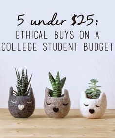 5 UNDER $25: ETHICAL BUYS ON A COLLEGE STUDENT BUDGET | In honor of Earth day and broke college students everywhere // because you shouldn't have to break bank to support ethical brands