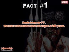 #fact #wolverine #marvel #macmerise