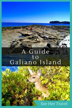 Galiano Island is one of Canada's West Coast gems, a top holiday destination for families that guarantees beautiful nature and relaxing quiet. Located on British Columbia's West Coast, Galiano Island is one of the top vacation destinations in Canada Top Vacation Destinations, Canada Destinations, British Columbia, Columbia Travel, Travel Guides, Travel Tips, Travel Photos, Visit Canada, Canada Travel