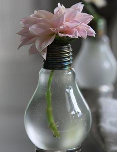 mantenere in vita un piccolo fiore