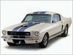 Google Image Result for http://static.cargurus.com/images/site/2010/10/12/21/03/1965_ford_mustang_shelby_gt350-pic-7058491093029638712.jpeg