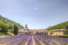 French Country Living Provence
