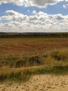 De ruta por Gumiel de Mercado en búsqueda de @Vinacos #vino #spain