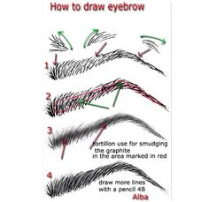 how to draw eyebrows digitally