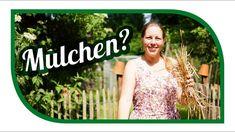 Bodenverbesserung im Garten 🍃 Mulchen, aber richtig