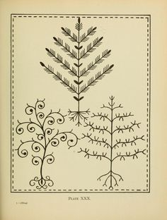 The Embroidery Pattern Book by Mary Waring is available free on Internet Archive