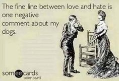 I may or may not have broken up with a seemingly perfect guy, after he expressed extreme irritation towards my dogs.