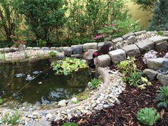 The garden pond 6