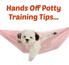 Hands Off Potty Training Tips...