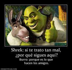 Shrek: si te trato tan mal, ¿por qué sigues aquí? Burro: porque es lo que hacen los amigos. Disney Characters Costumes, Character Costumes, Shrek, Burritos, True Friends, Plans, Lol, Funny, Life Quotes