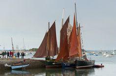La semaine du Golfe du 11 au 17 mai 2015 – Golfe du Morbihan - Camping Morbihan : Idée sorties et événement en Bretagne Sud - Camping de La Tour. Brittany