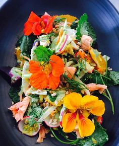 """We hope you are feasting on something as delicious and vibrant as this """"Springtime Rainbow Salad with Poached Salmon"""""""